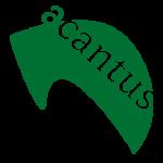 Acantus